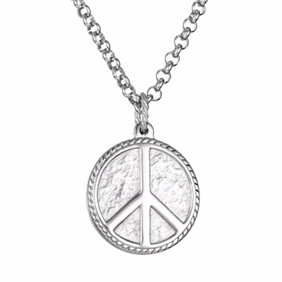 PEACE TITANIUM STELL NECKLACE